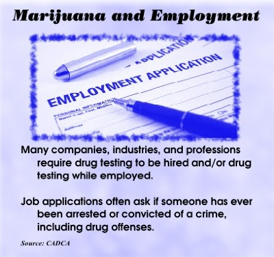 marijuana-employment
